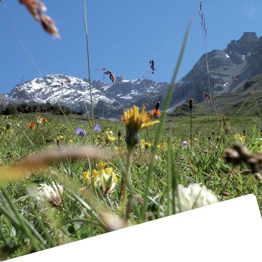 valle_trekking_bormio