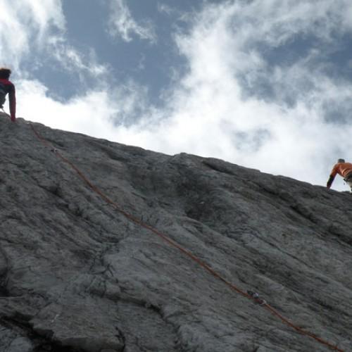 climbin_valzebry